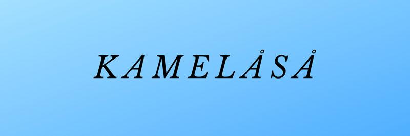 Kamelåså – Det bedste kendte danske ord